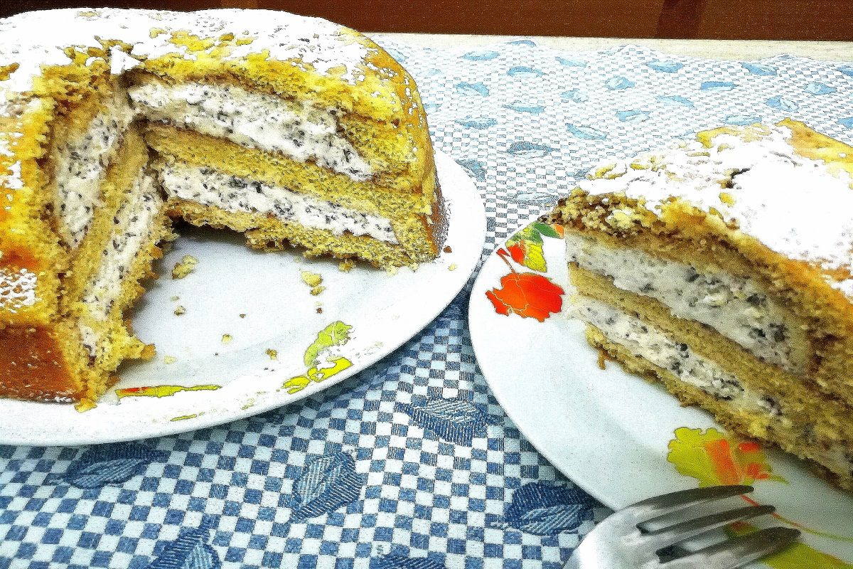 Ricetta Pan Di Spagna Per Zuccotto.Zuccotto Gelato La Ricetta Veloce Di Un Dolce Delizioso
