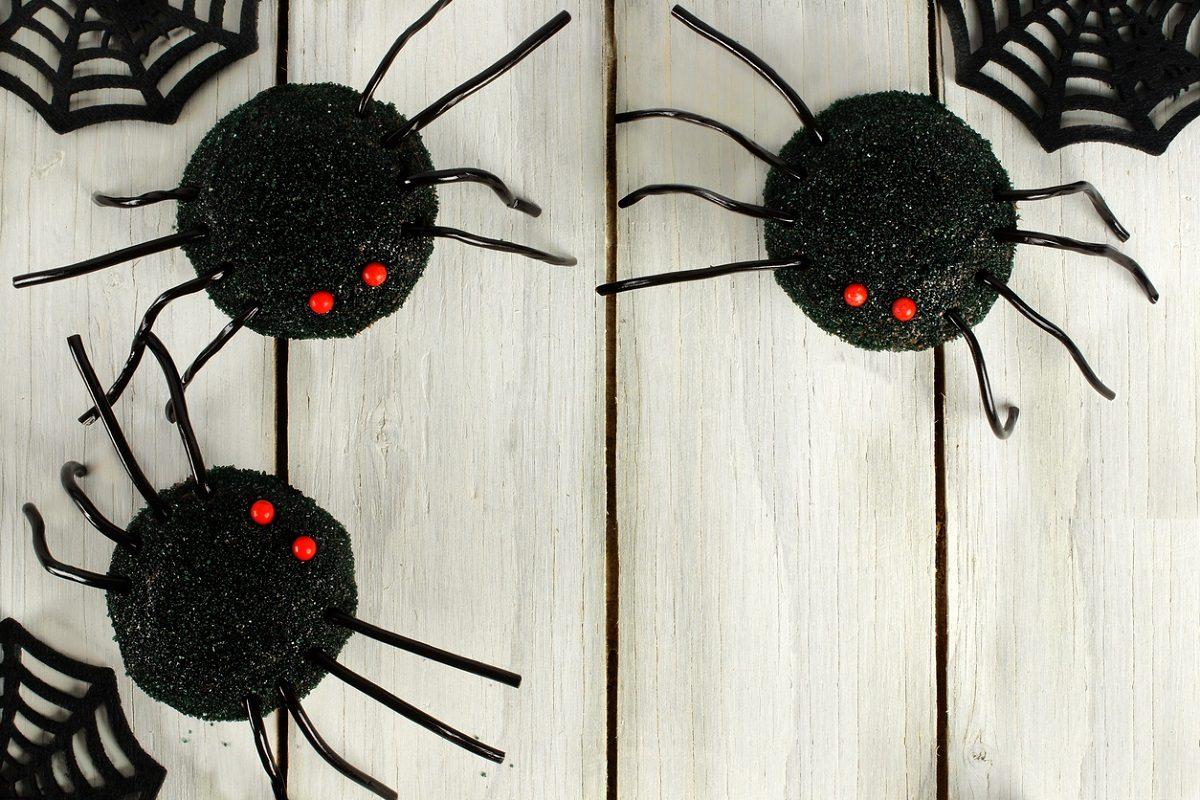 Ragni di Halloween: la ricetta del dolcetto spaventoso facile da preparare