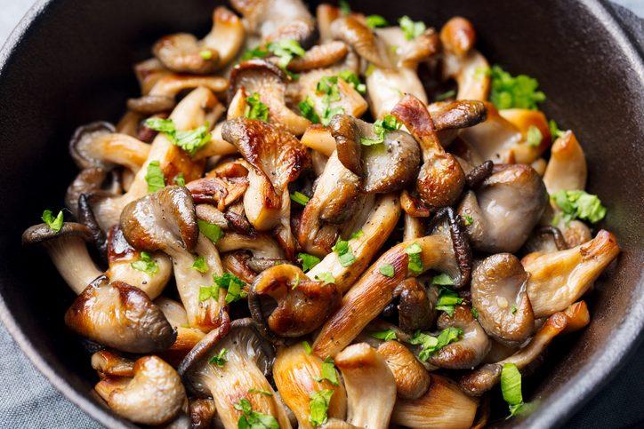 Funghi: proprietà, benefici e usi in cucina
