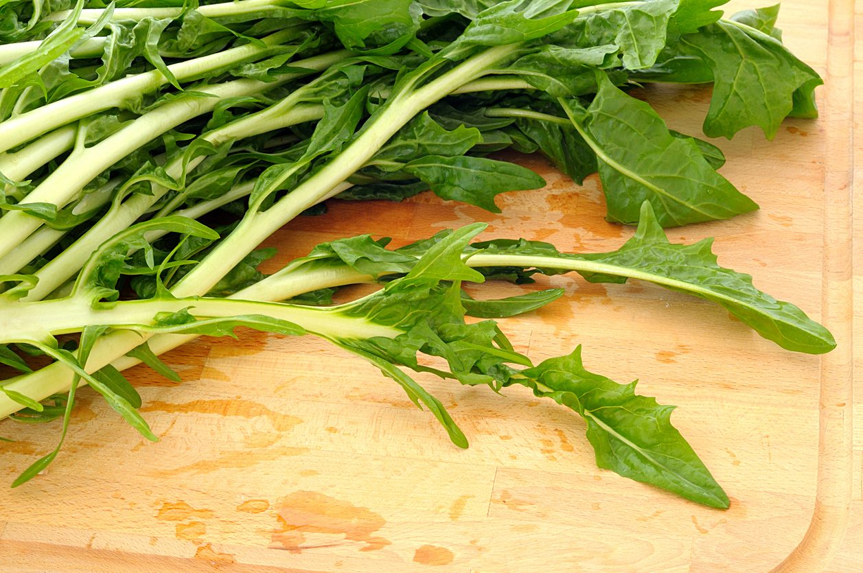 Come cucinare la cicoria: trucchi e consigli per gustarla al meglio