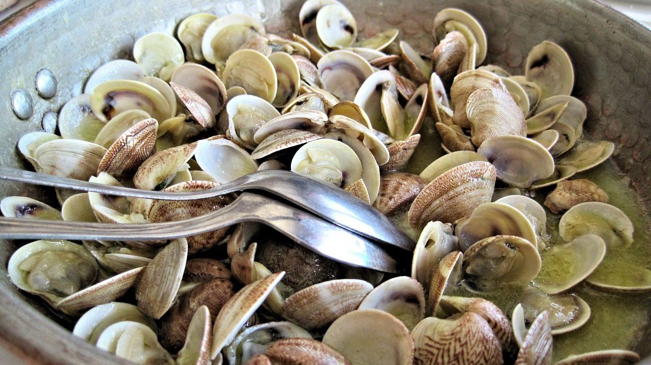 Sautè di vongole: la ricetta della pietanza saporita campana