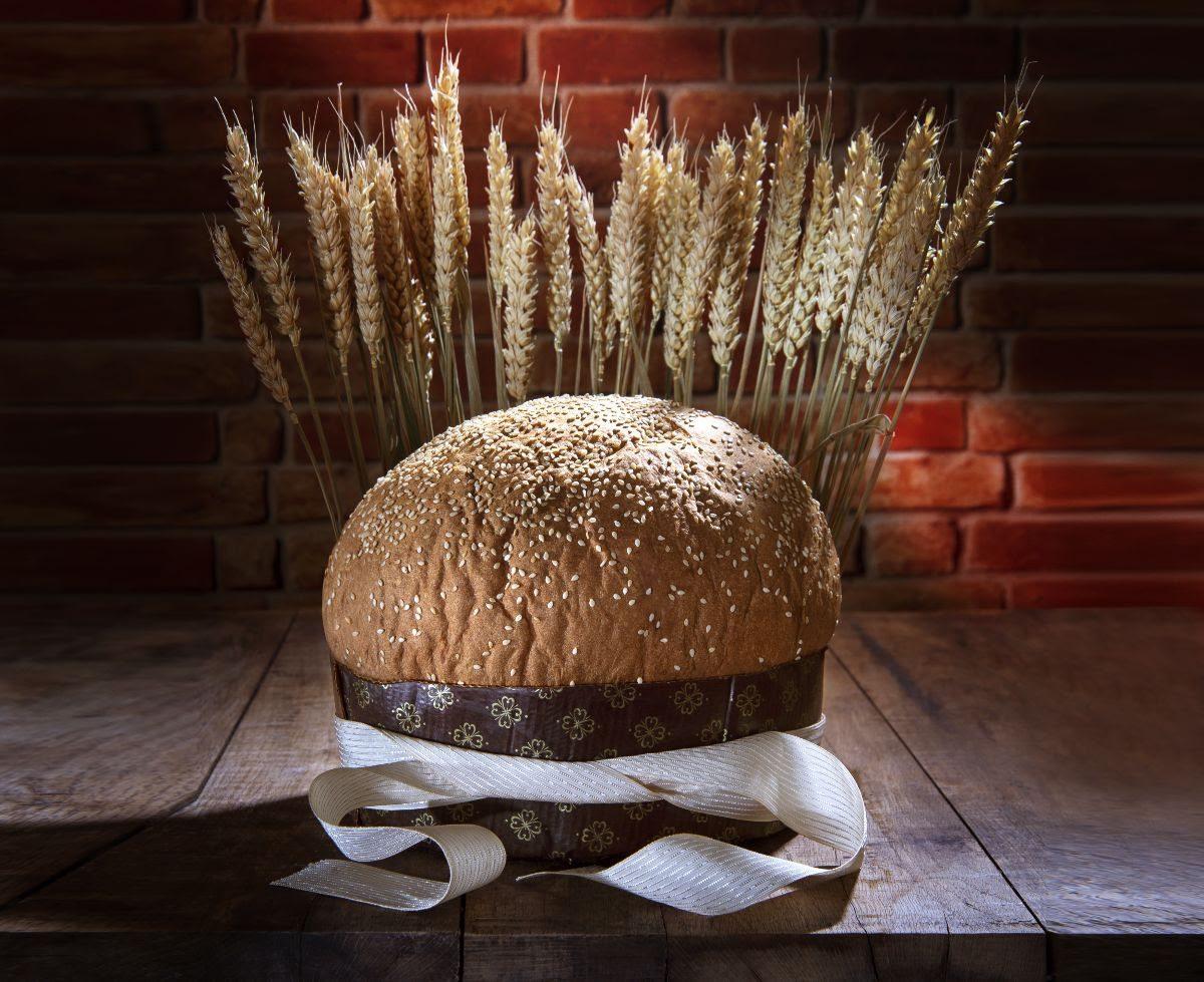 Migliori panettoni artigianali: la focaccia ai cereali di Claudio Gatti