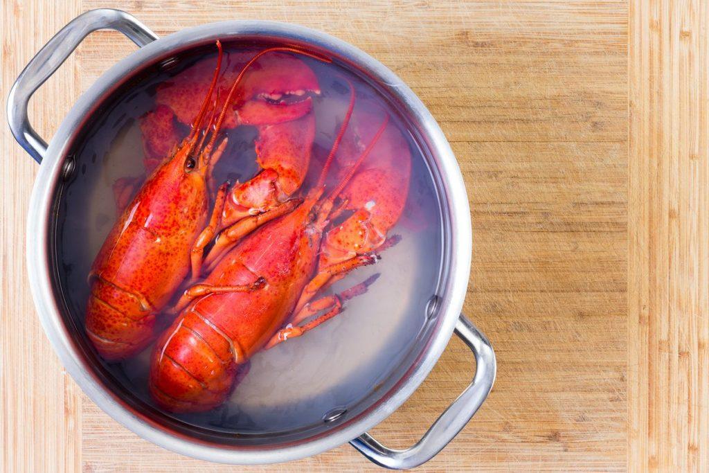 astice-aragosta-cucina