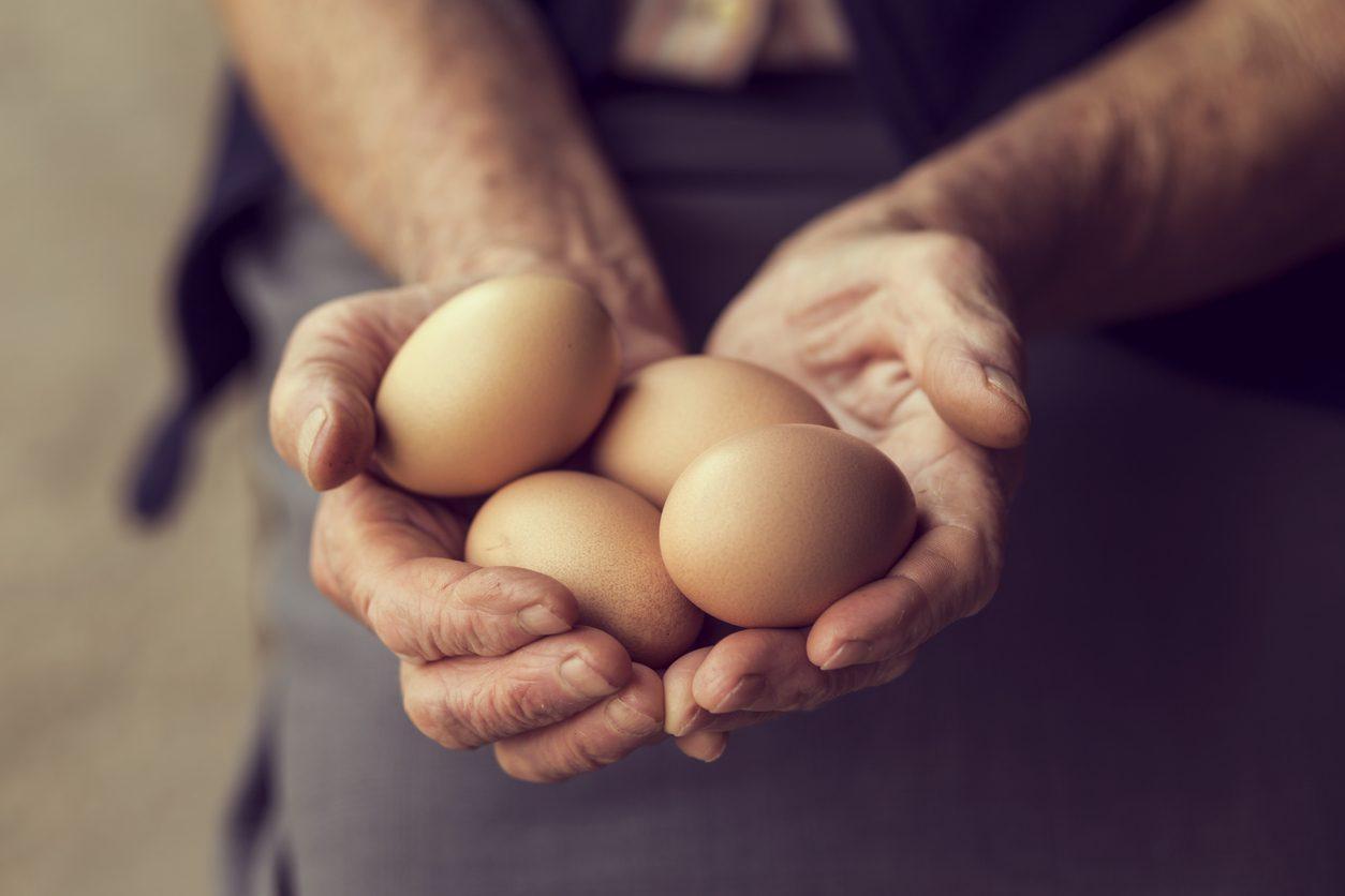 """Attenzione alle uova allevate """"quasi"""" a terra: ecco le aziende virtuose che le vietano"""
