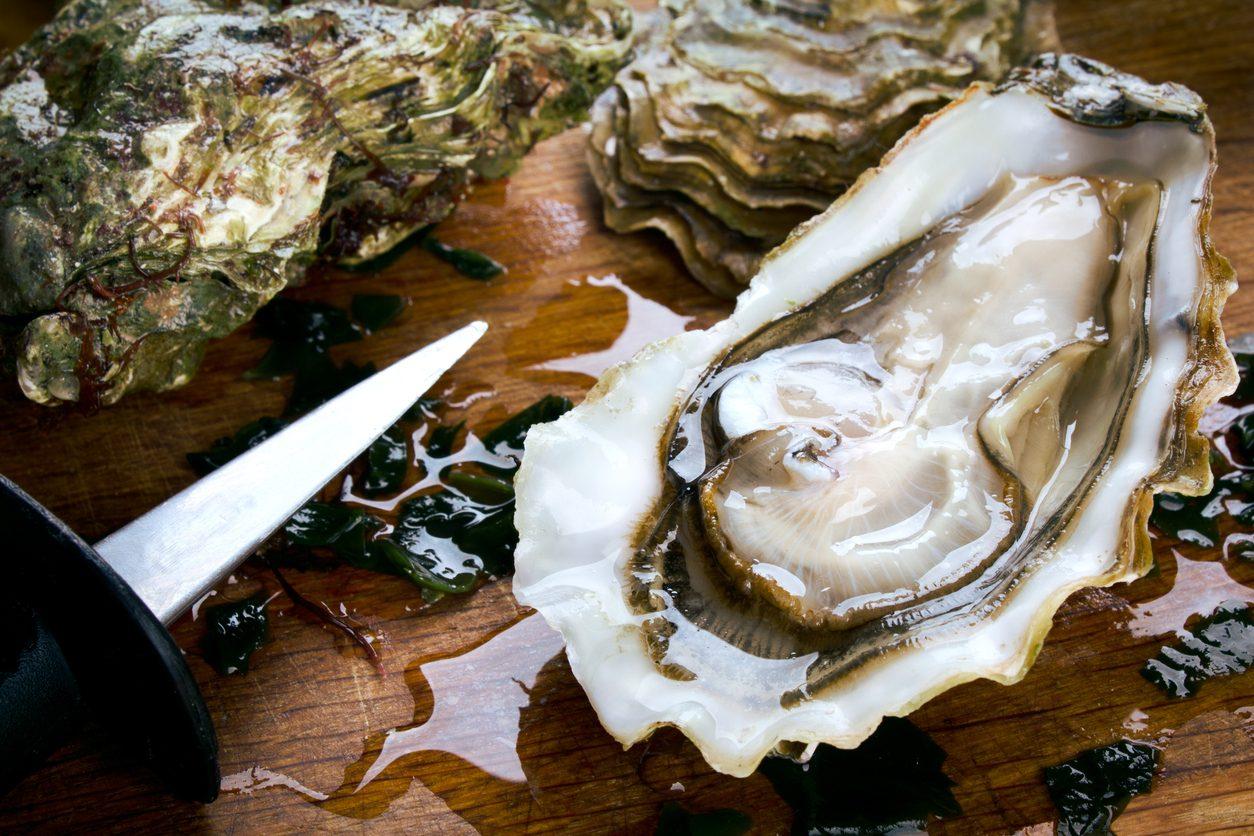 Stop alla produzione di ostriche in Francia: contaminate dal norovirus