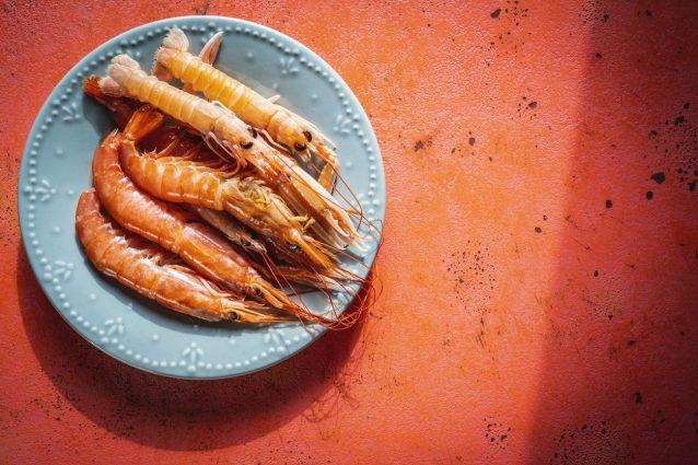 gamberi-crostacei-scampi-cadmio