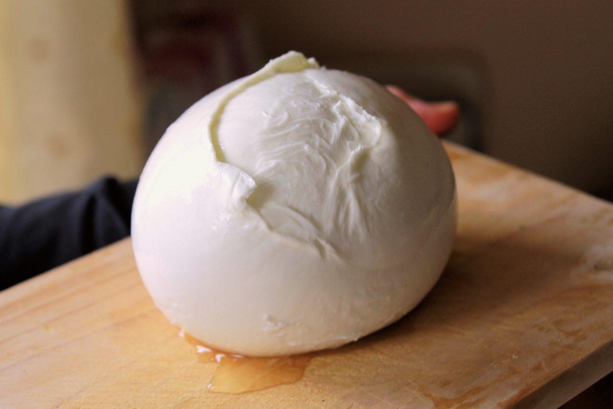Mozzarella di bufala campana DOP: scoperti indirizzi web per la vendita di prodotti fake
