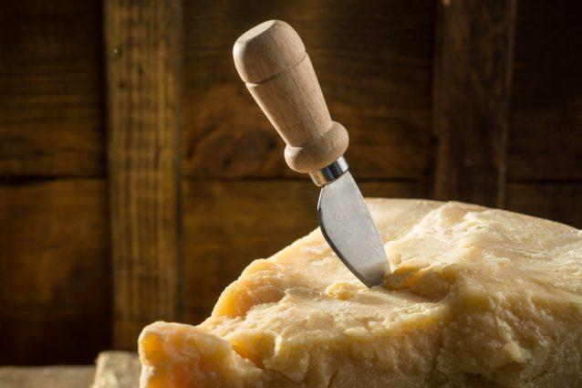parmigiano-parmesan