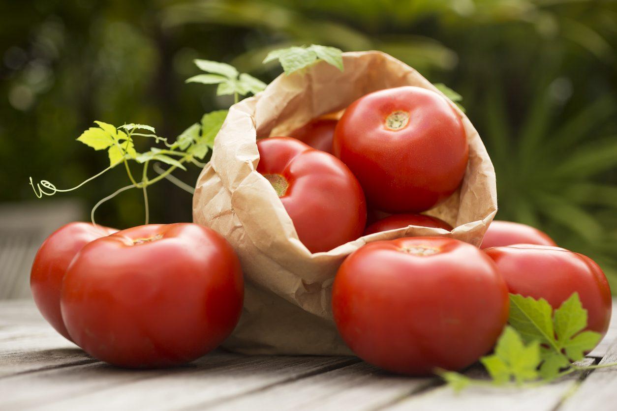 Perché i pomodori diventano neri sotto? Cause e rimedi del marciume apicale
