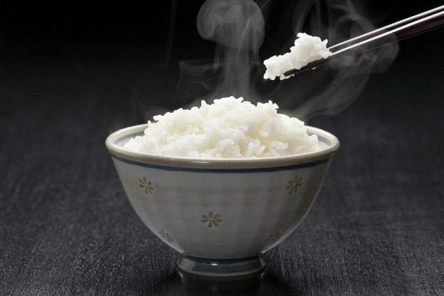 riso-gohan