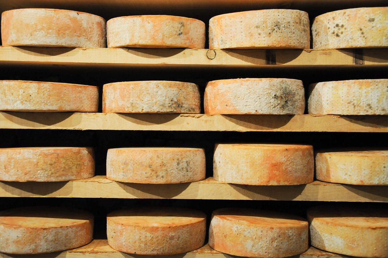 Fontina Dop: storia, produzione e usi in cucina del formaggio valdostano