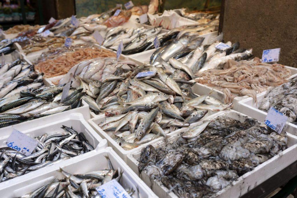 orate-spigole-pesce