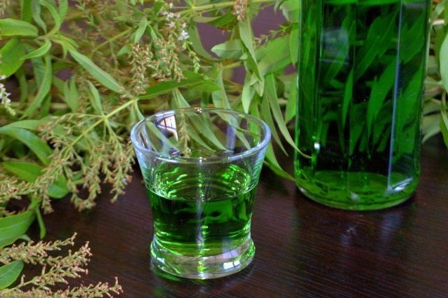 Liquore all'erba Luigia: la ricetta del digestivo di erba cedrina