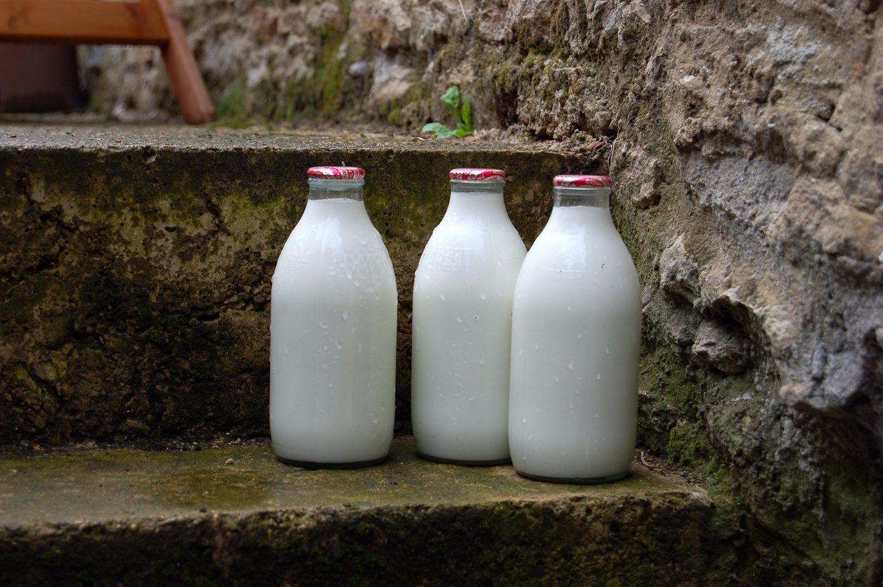 Tutti i segreti del Latte Nobile: quanto costa, dove si compra e i suoi benefici