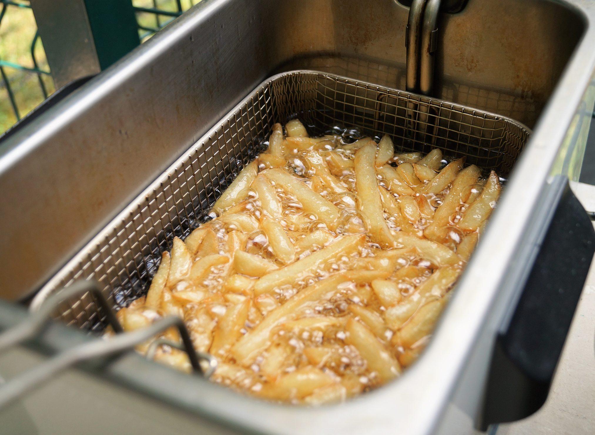 Resina biodegradabile ed ecologica con l'olio riciclato delle friggitrici del McDonald's