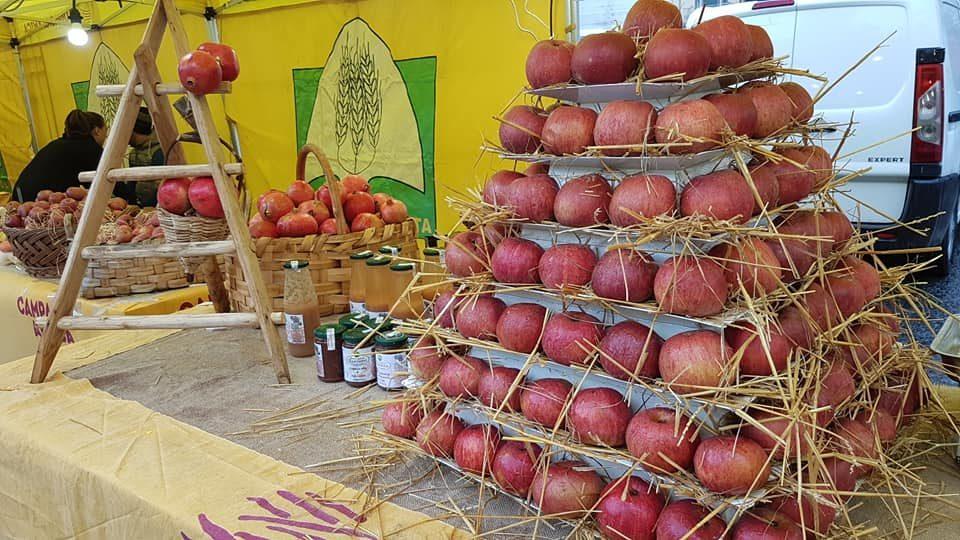 A Napoli apre il più grande mercato contadino del Sud Italia