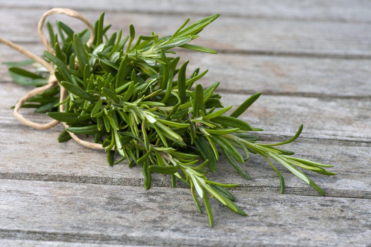 Conservare il rosmarino: 5 metodi semplici per averlo a disposizione tutto l'anno