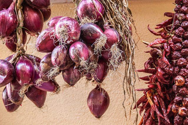 cipolla rossa: varietà e usi