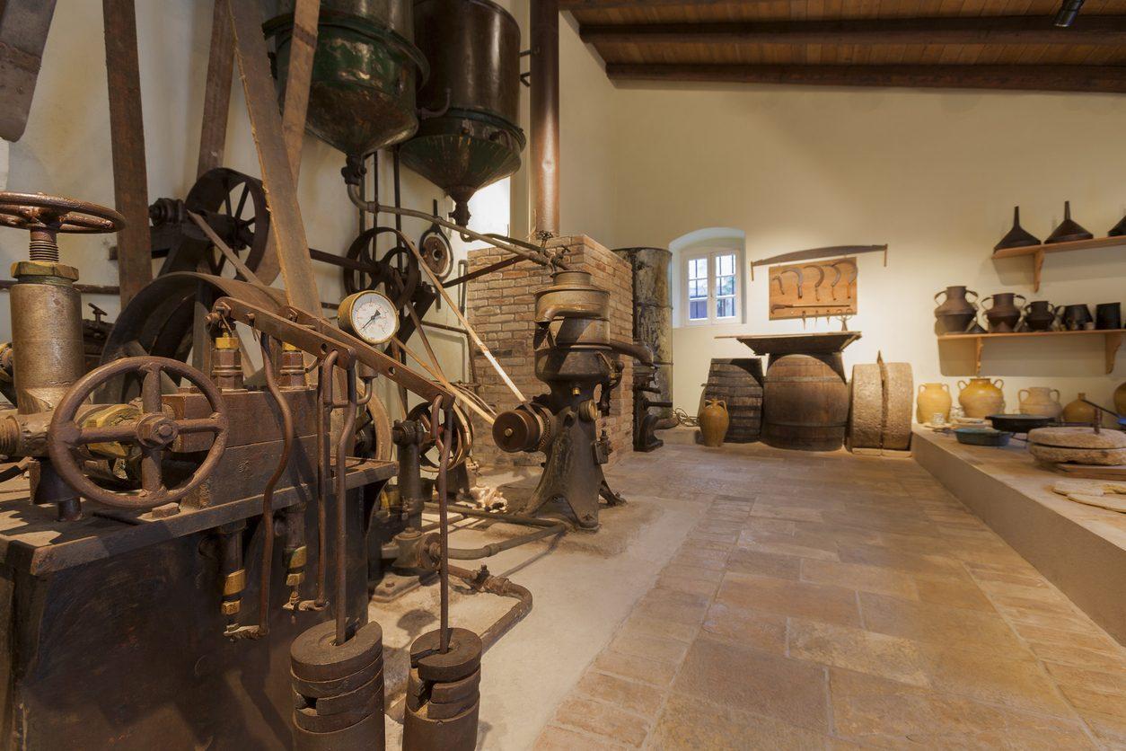 Musei gastronomici: 10 indirizzi dedicati alle eccellenze italiane