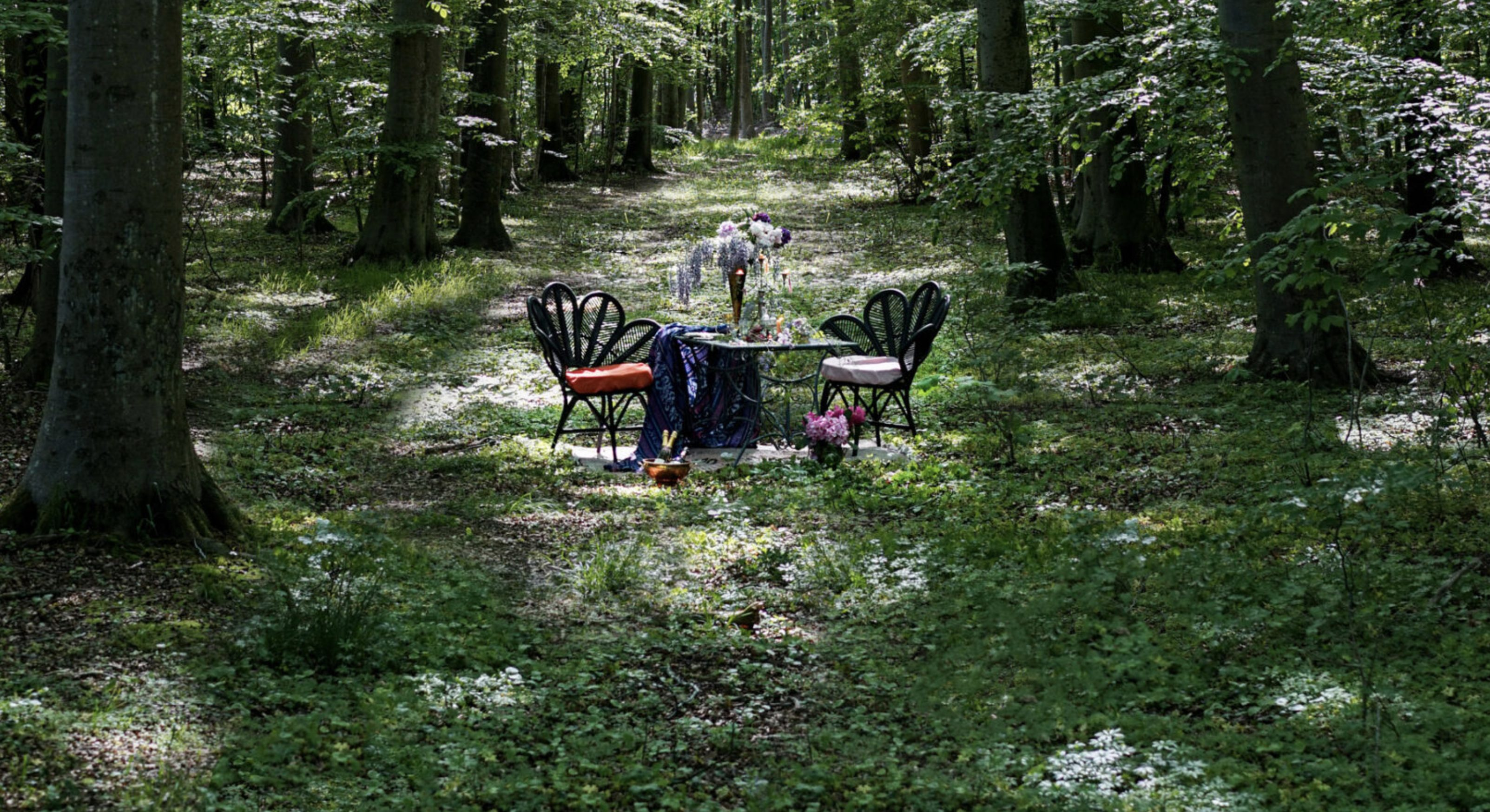 Un ristorante con 6 tavoli in una foresta: in Svezia apre Nowhere