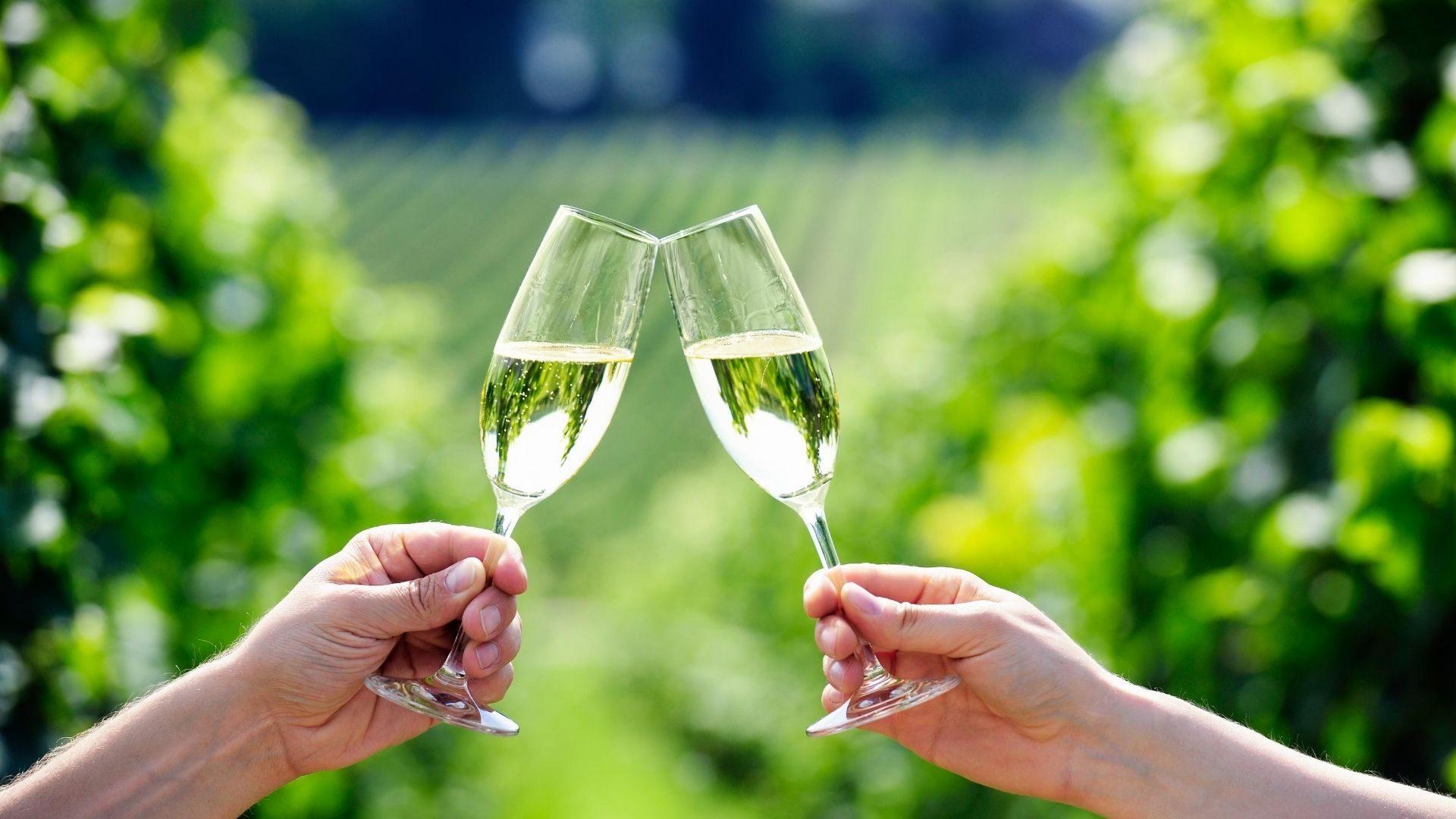 Prosecco: ecco perché è il vino più famoso al mondo