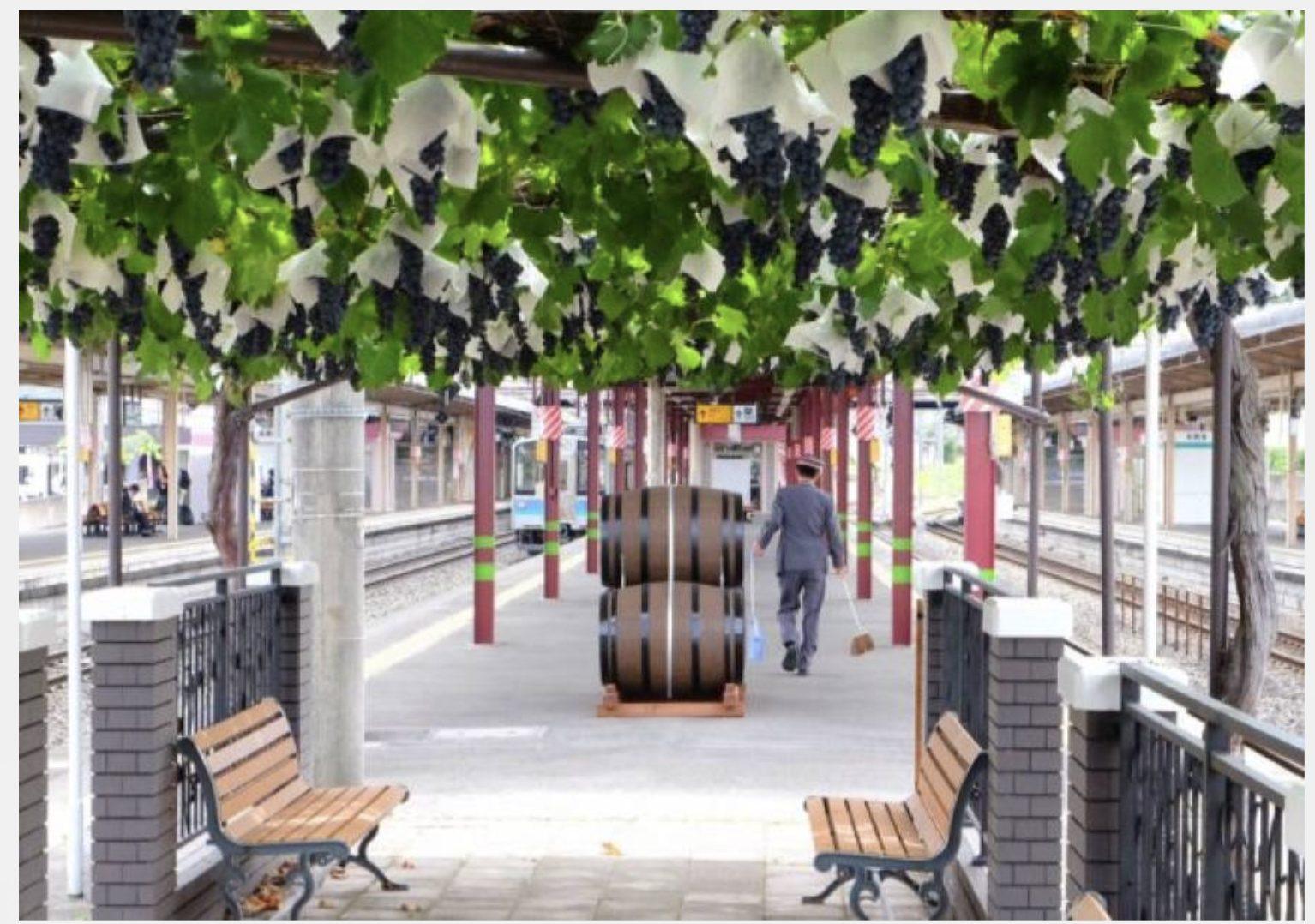 Il vino dall'uva cresciuta in una stazione rappresenta tutta la poetica del Giappone