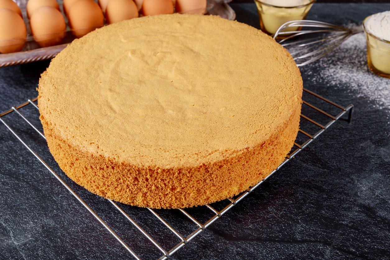 Torta Maddalena: la ricetta della base ideale per le torte farcite