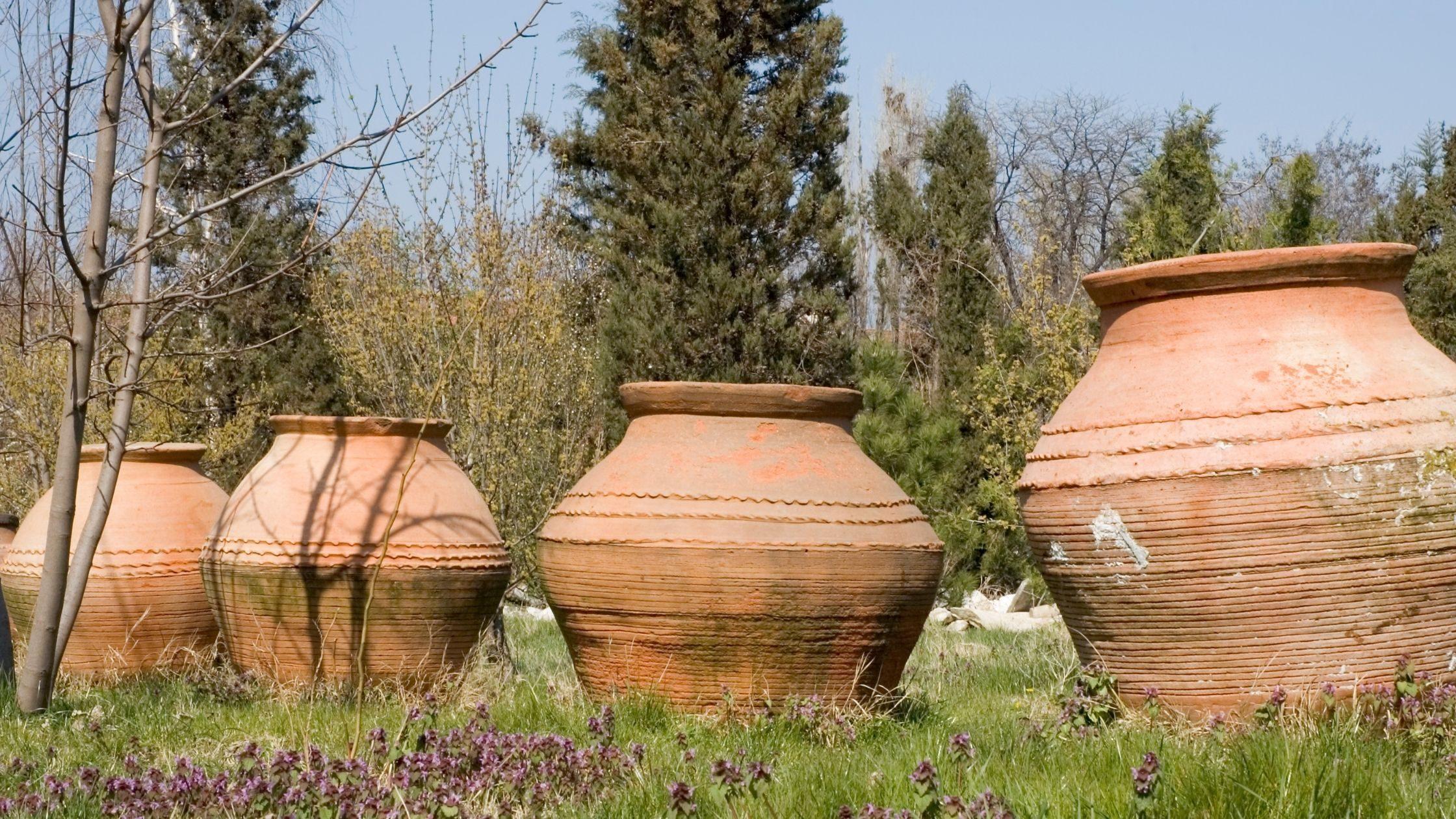 Vini in anfora: cosa sono e perché piace l'Amphora Revolution