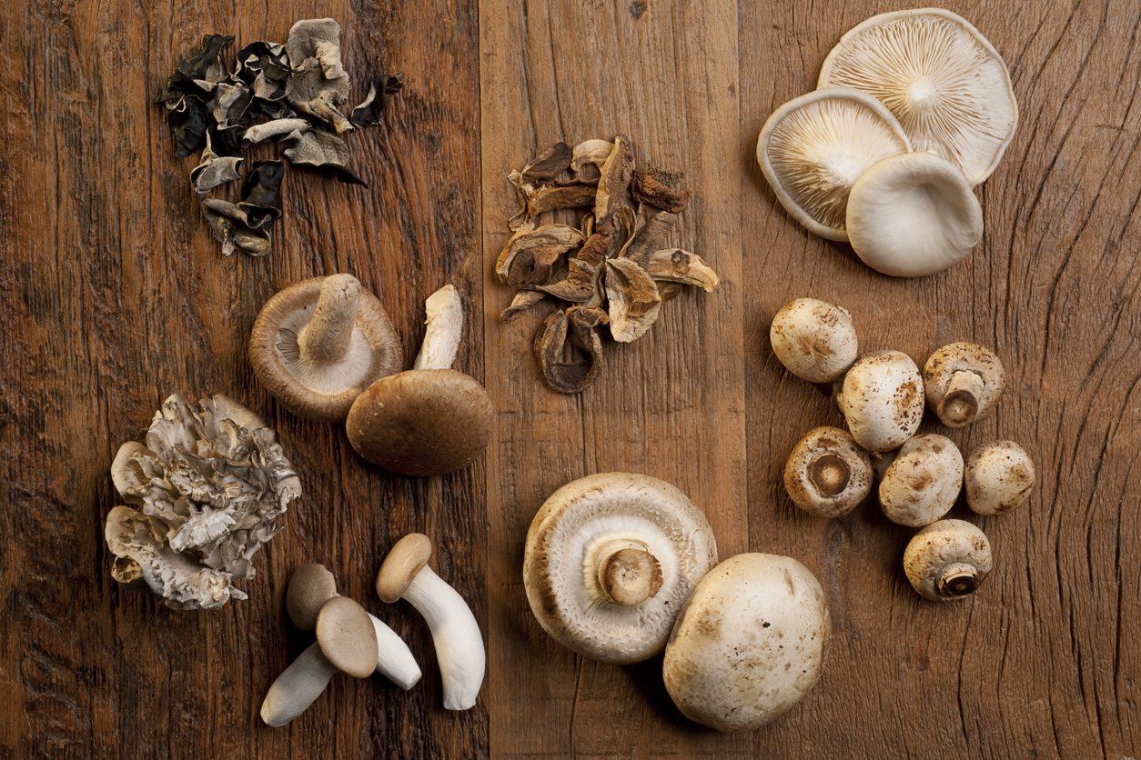 10 varietà di funghi e i consigli per cucinarli al meglio
