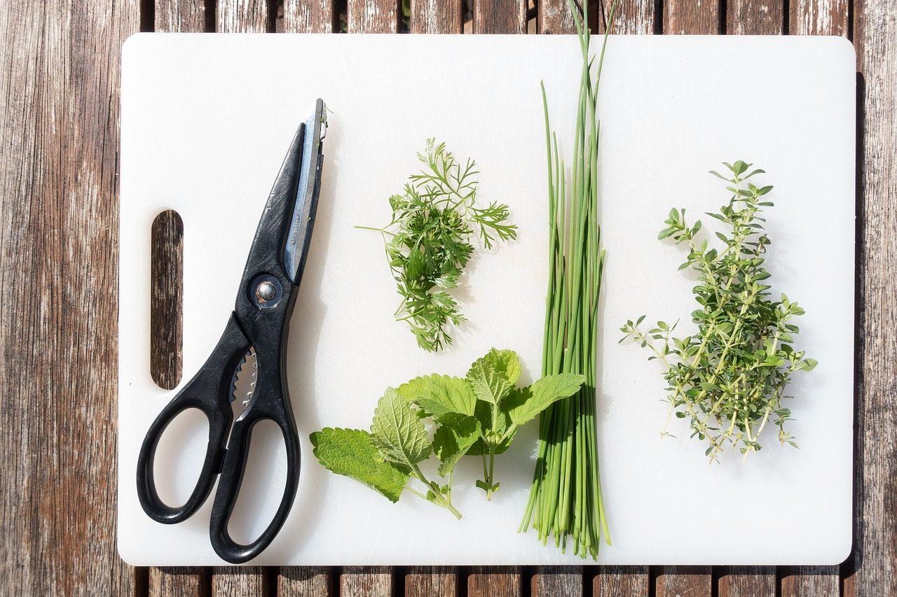 Le migliori forbici da cucina: guida all'acquisto