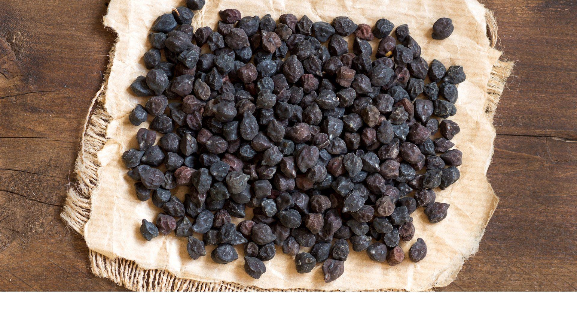 Il cece nero della Murgia carsica: storia, proprietà e consigli su come usarlo in cucina