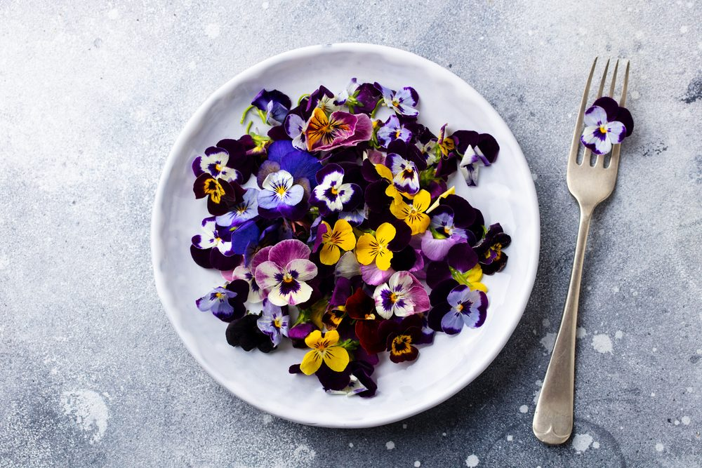 Fiori edibili: 5 varietà da scoprire per arricchire i vostri piatti