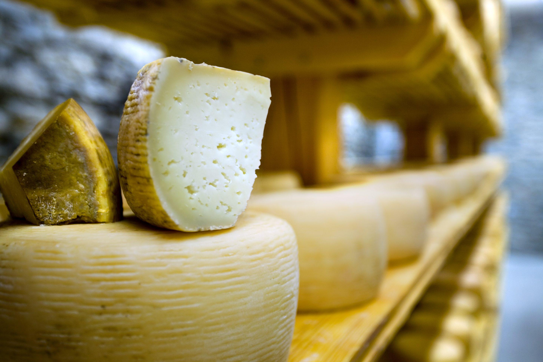 Pecorino: tutto sul formaggio di Polifemo e quali sono i migliori in Italia