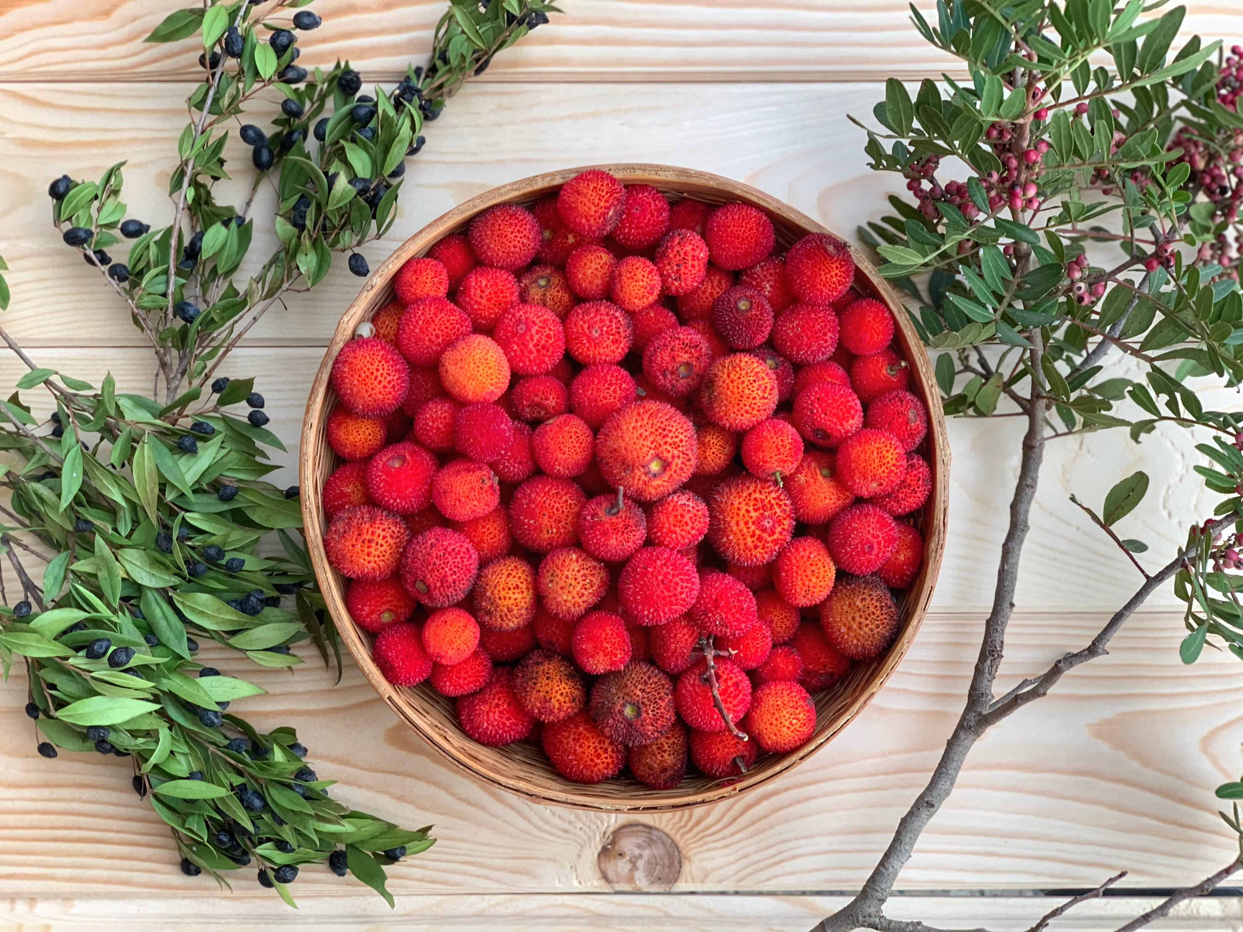 Corbezzole: dove trovare i frutti e come usarli al meglio in cucina