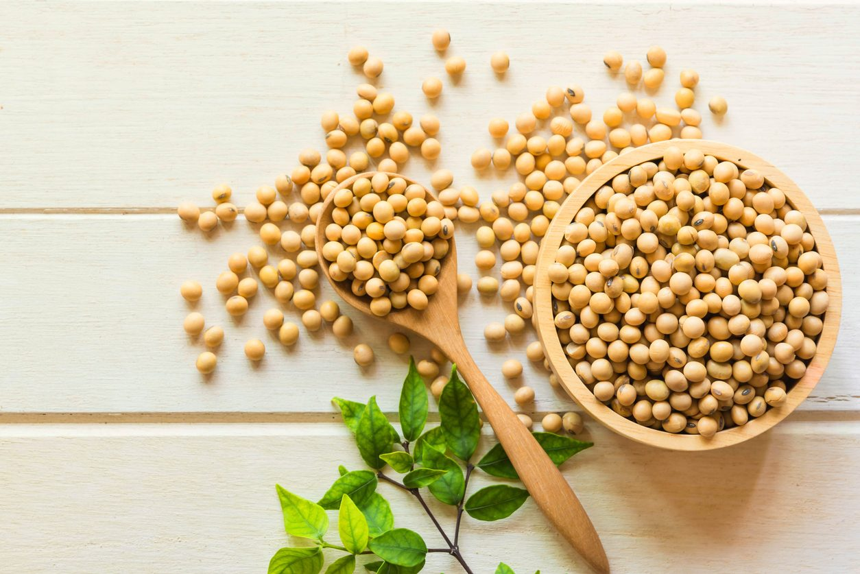 farina di soia: cos'è e come si utilizza