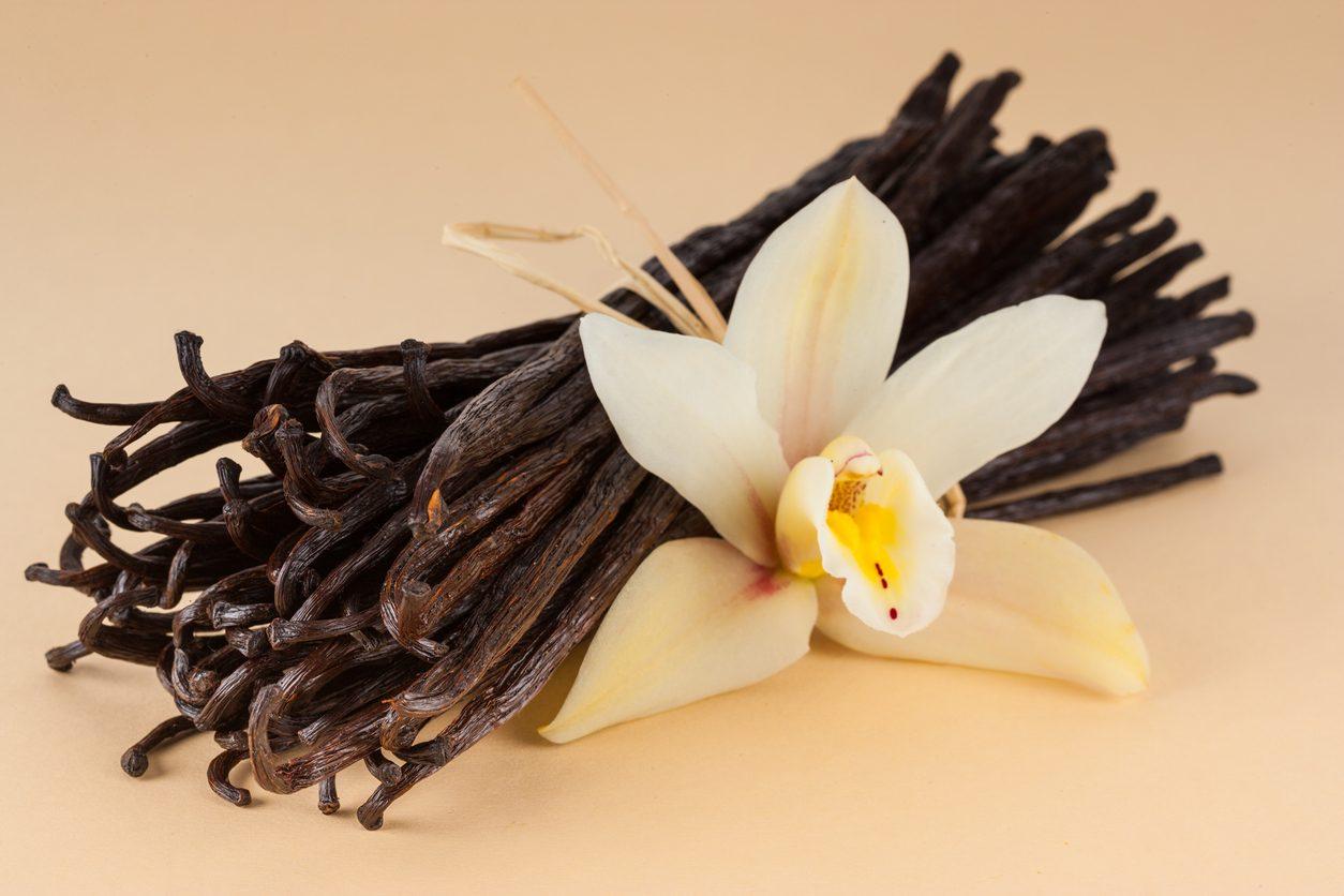 """Vaniglia: da dove viene e come si usa in cucina """"l'oro nero messicano"""""""