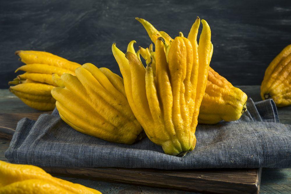 Mano di Buddha: il raro frutto cinese profumato e ricco di oli essenziali