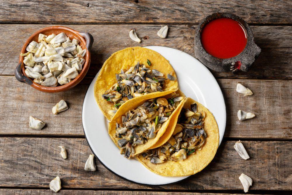 Brutto ma buono: il huitlacoche, il fungo messicano millenario che cresce nelle pannocchie