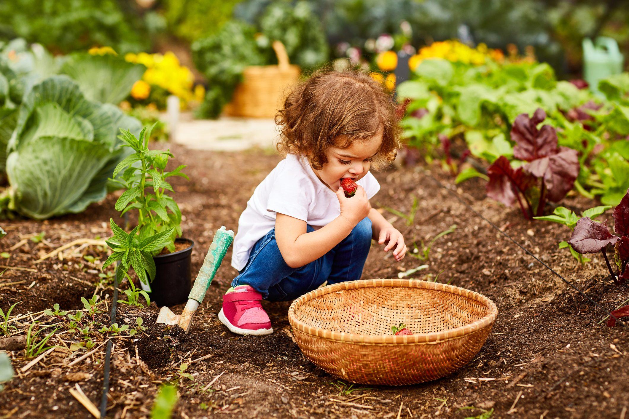 Ciò che mangiamo da piccoli influenzerà la nostra vita per sempre: una ricerca lo dimostra