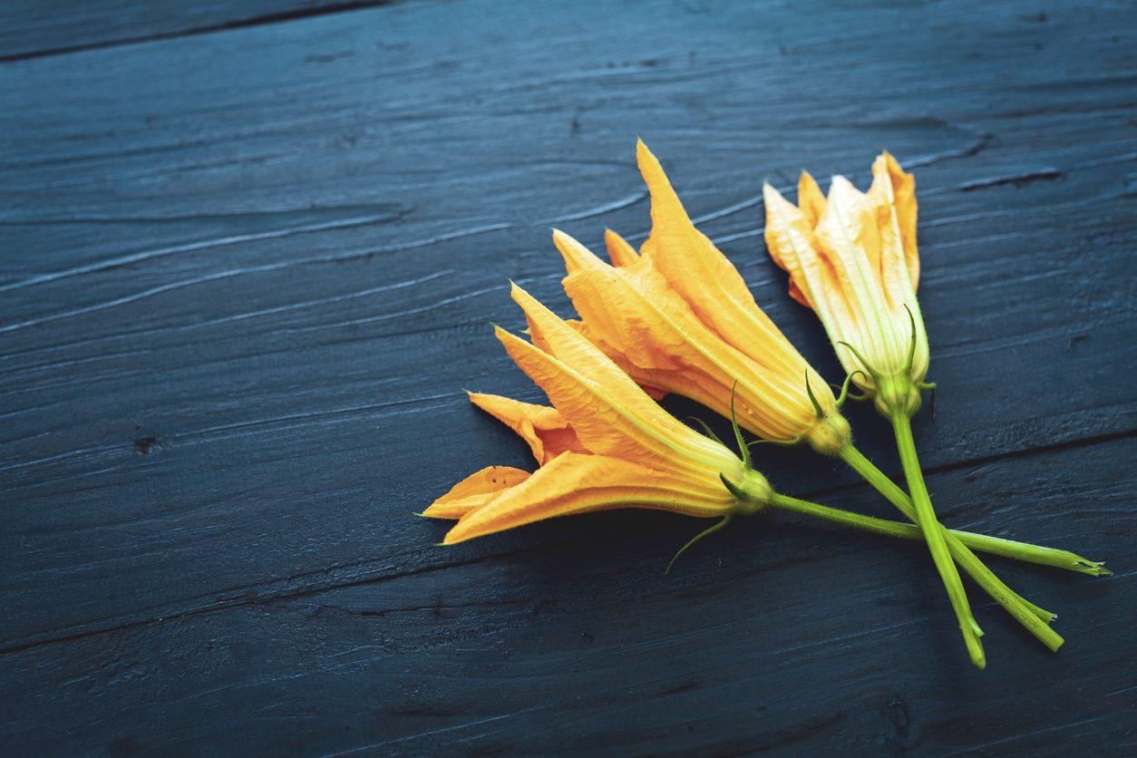 Come pulire i fiori di zucca: trucchi e consigli per farlo alla perfezione