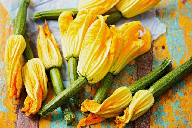 fiori di zucca: proprietà e usi