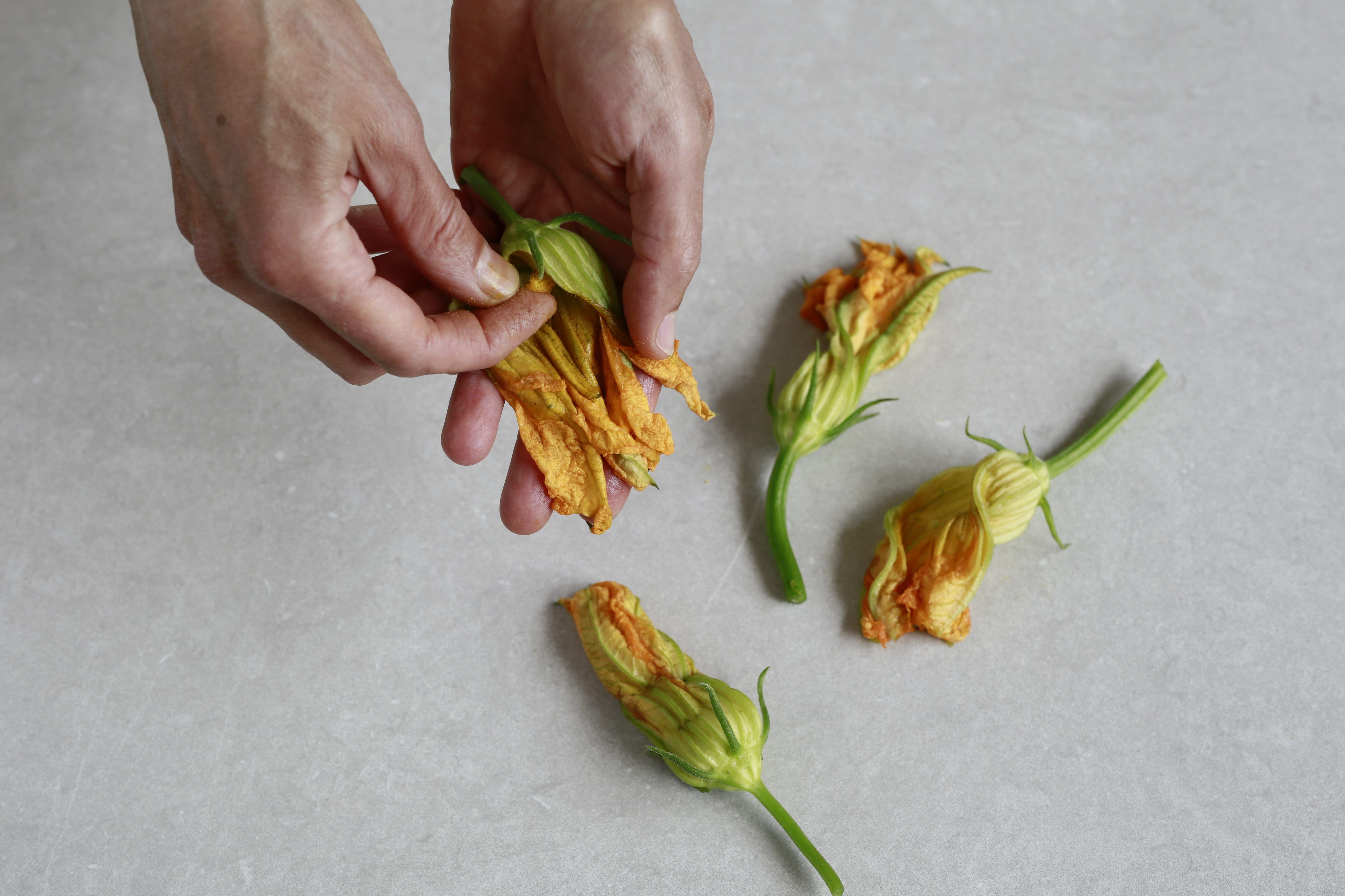 risotto fiori di zucca e alici