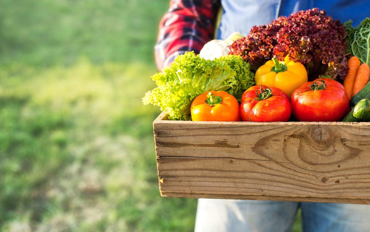 Cosa comprare al mercato a giugno: verdura, frutta e pesce di stagione