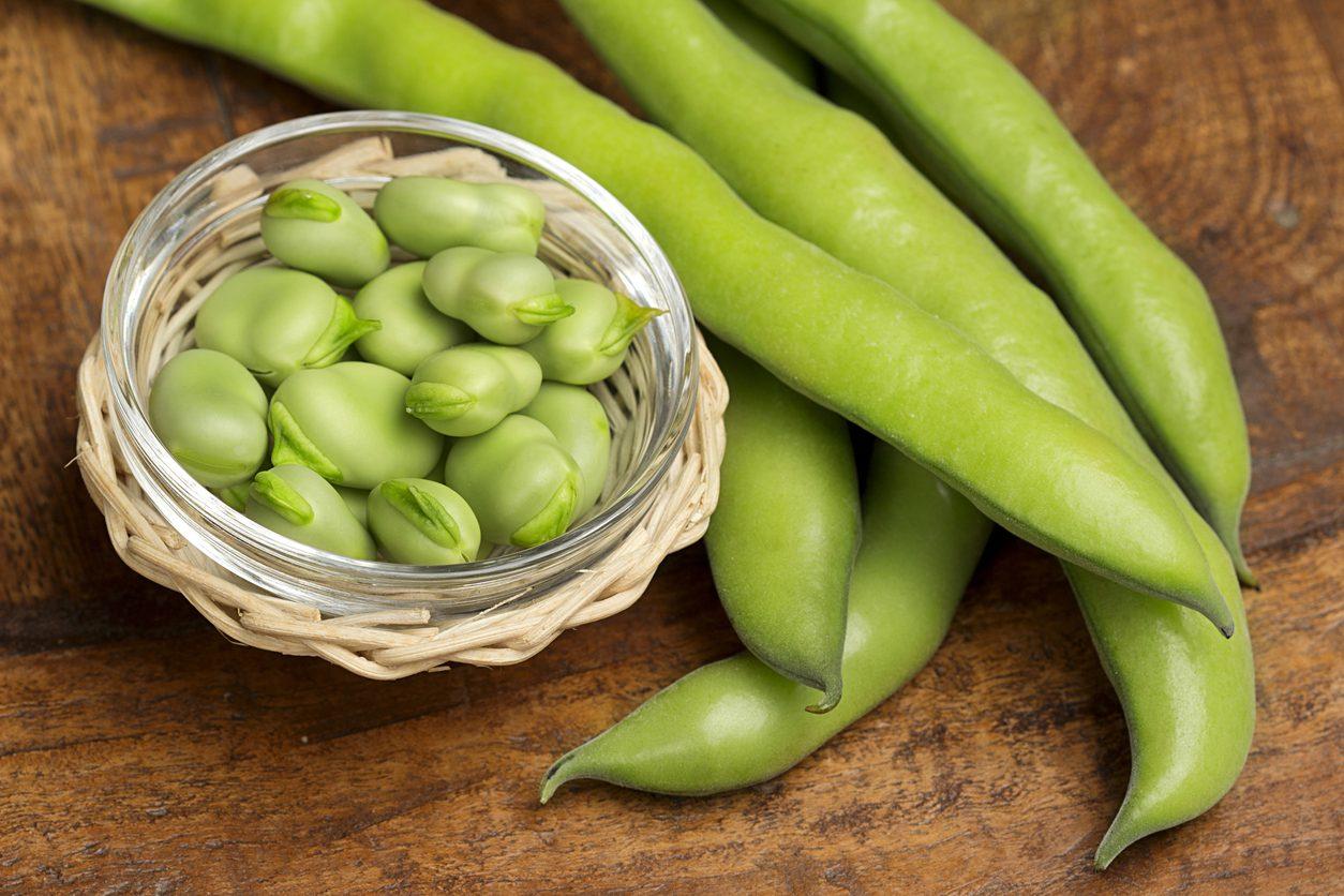 Ricette con le fave fresche: 9 piatti golosi e semplici da realizzare