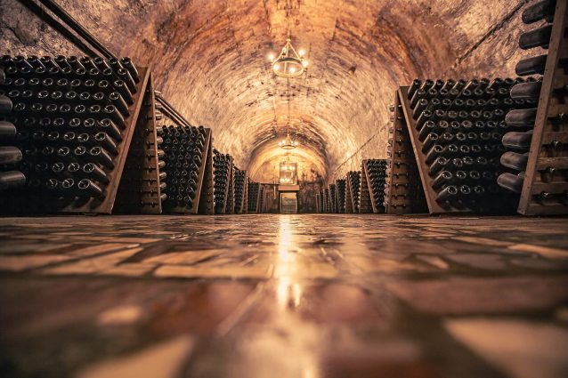 Con B.e.v.i il vino si fa arte: su Sky l'appuntamento dedicato all'enologia italiana
