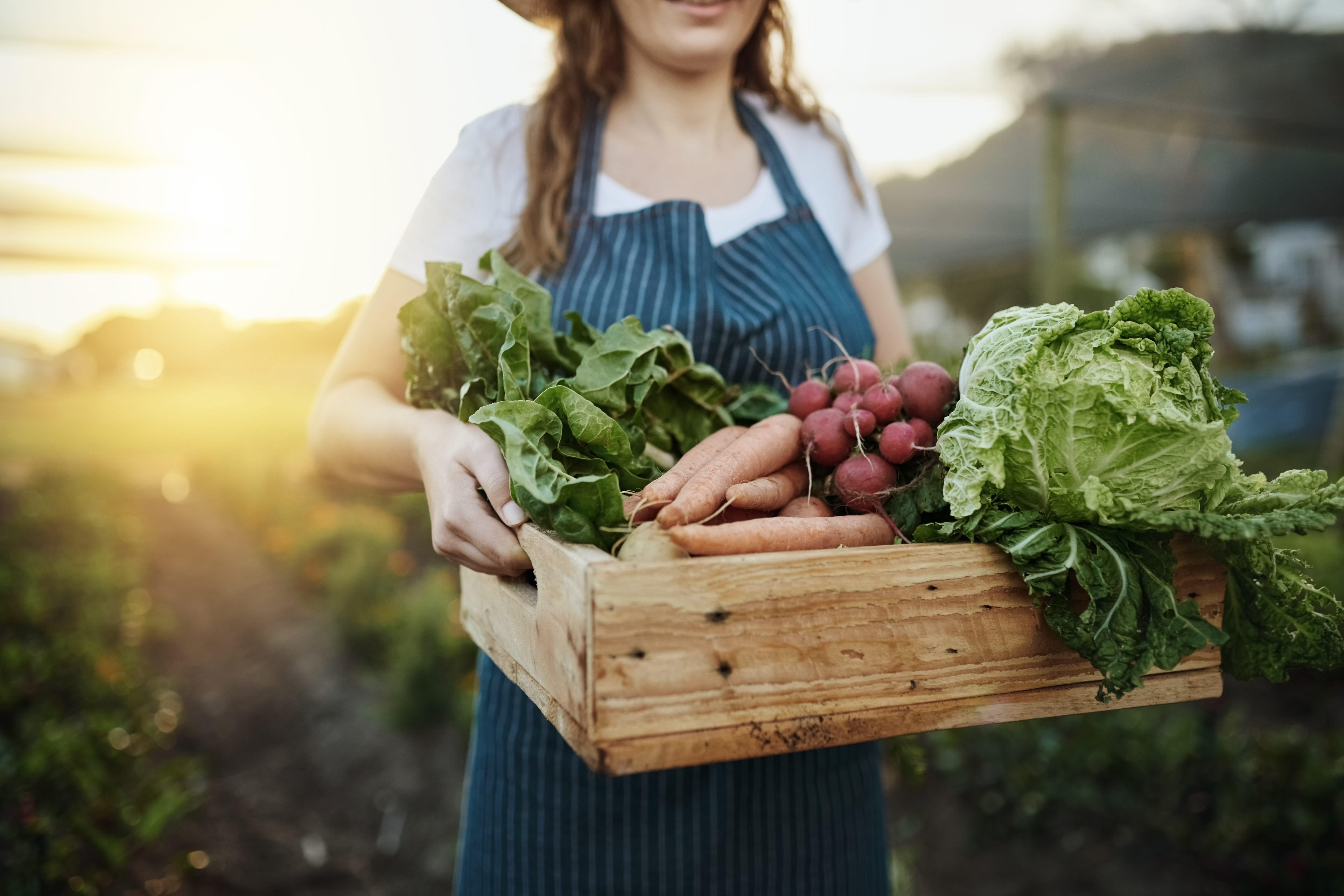 Con Agriexperience potete diventare contadino per un giorno