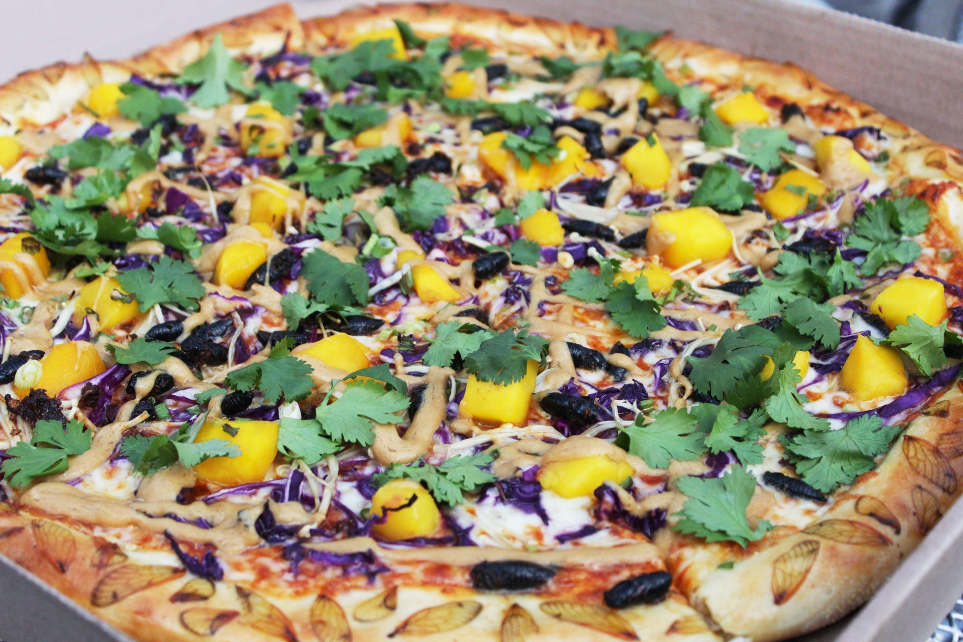 Pizza con le cicale: l'idea di novel food direttamente dagli Stati Uniti