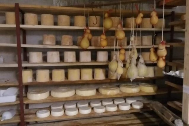 Roberta colombero pastora margara formaggi