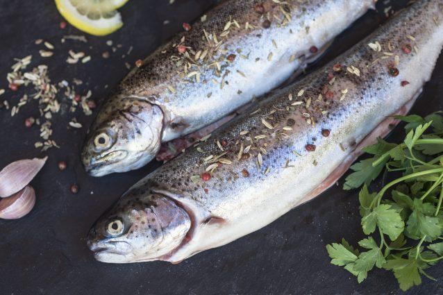 piatti tipici terni Umbria trota lago