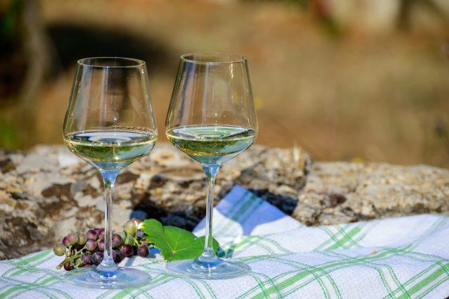 vino lago Bolsena cosa mangiare bere